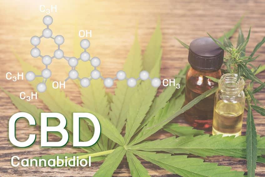 Les bienfaits médicaux du CBD
